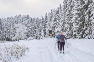 Schnee, Langlauf, Wald, Winter